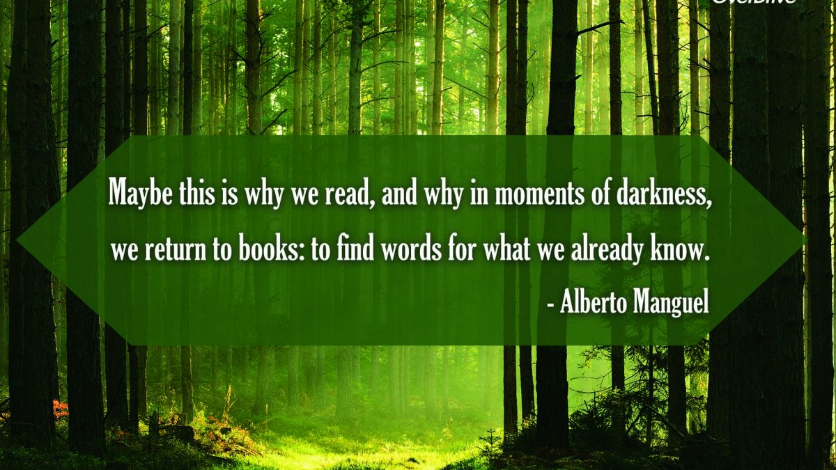 words we already know quote on green wooded backdrop feature image