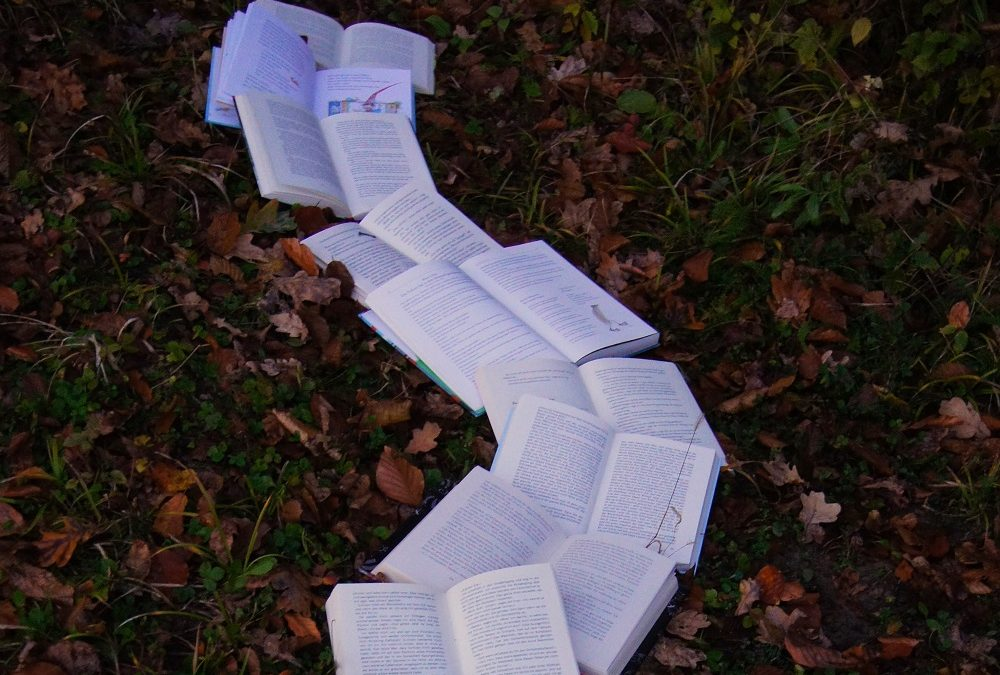 path of open books on grass and leaves